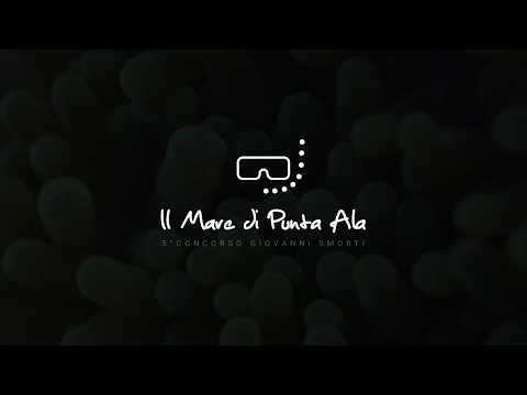 Il Mare di Punta Ala 2018 - Sponsors